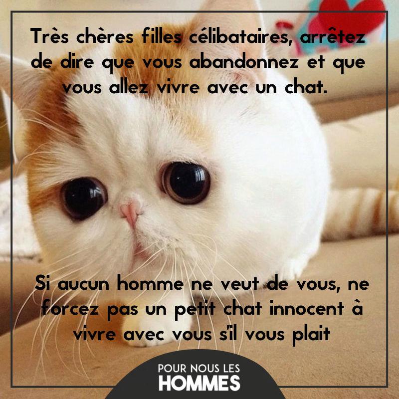 HUMOUR - Drôles de bêtes... - Page 4 13626310