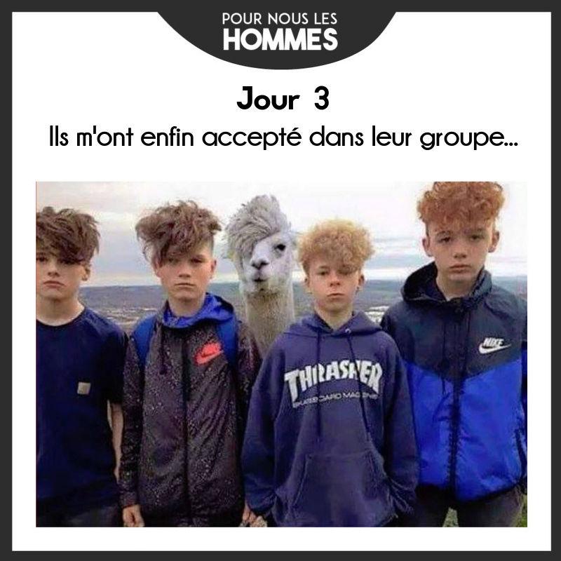 HUMOUR - Drôles de bêtes... - Page 4 13906810