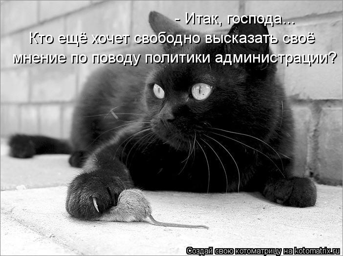 Черный юмор Kotoma11