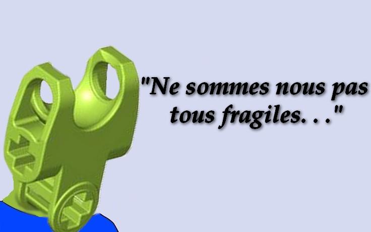 [Fans-Arts] Les Memes Bionifigs - Page 14 Fragil10