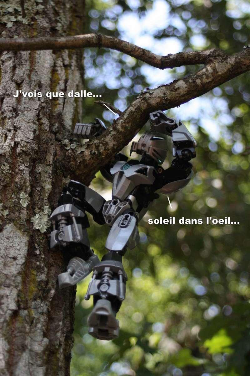 [Blog] Loys' et Skrall' : promenons nous dans les bois ... ♫♪ Vigie210
