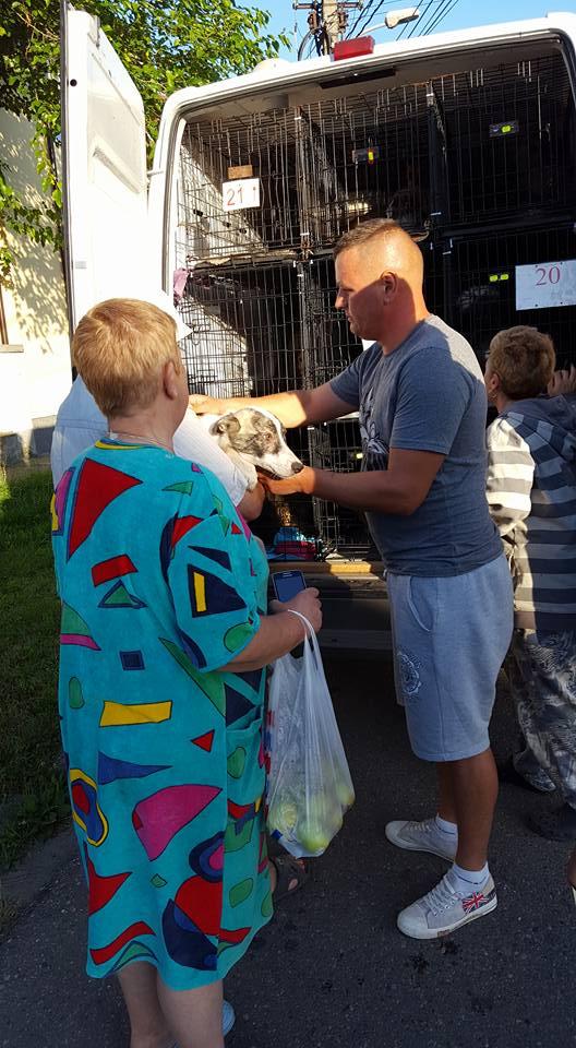 PHOTOS DU RAPATRIEMENT Roumanie  9/10 juillet 2016 13495111