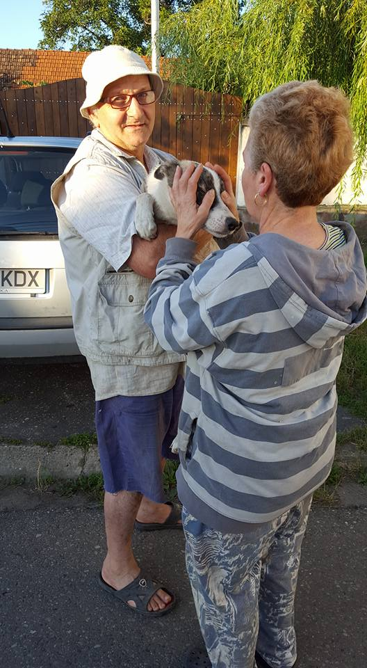PHOTOS DU RAPATRIEMENT Roumanie  9/10 juillet 2016 13654314