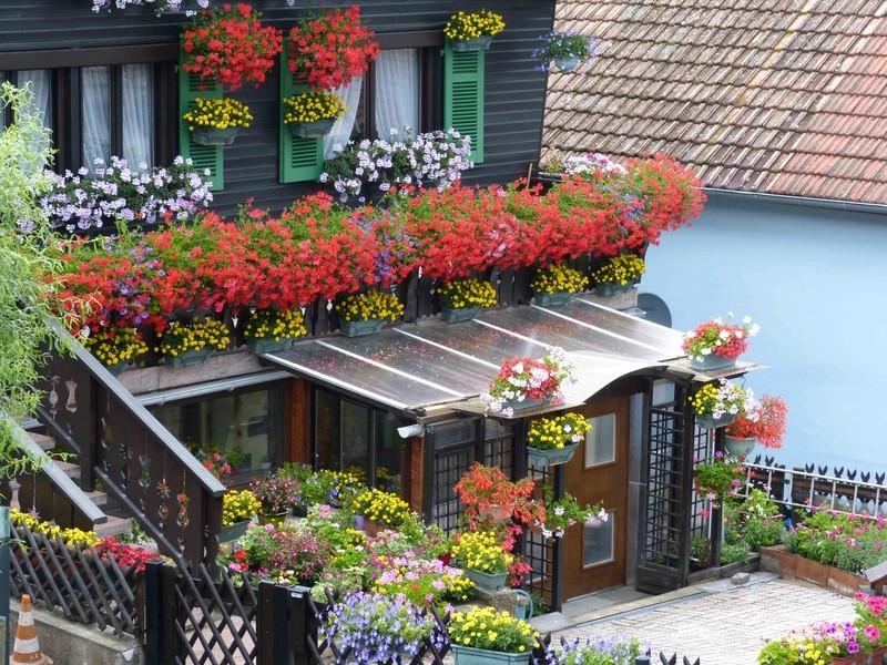 Maison fleurie Chalet12