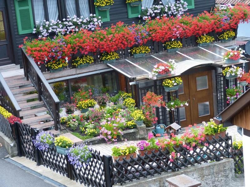 Maison fleurie Chalet13
