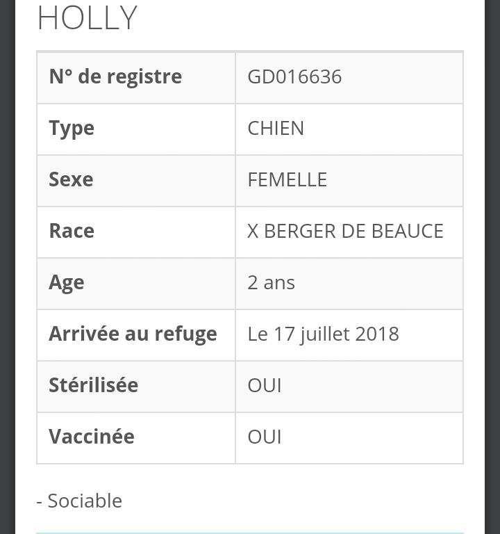 HOLLY femelle beauceronne née en 2016 Scree146