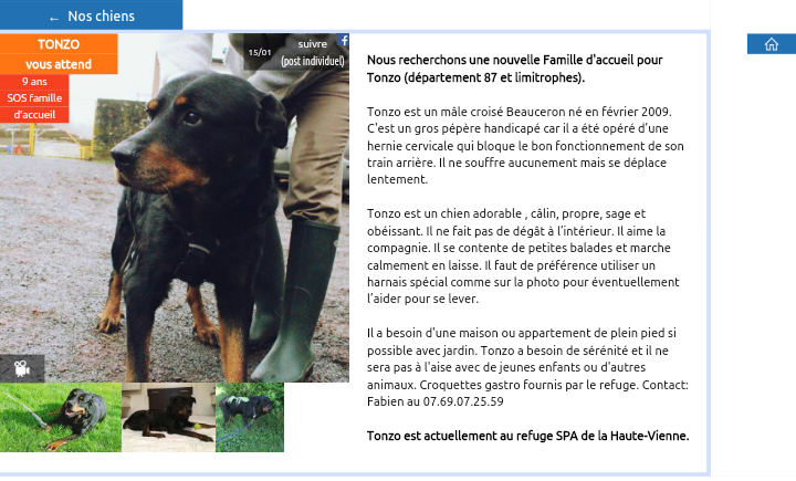 TONZO, x beauceron handicapé né en 2008 Scree337