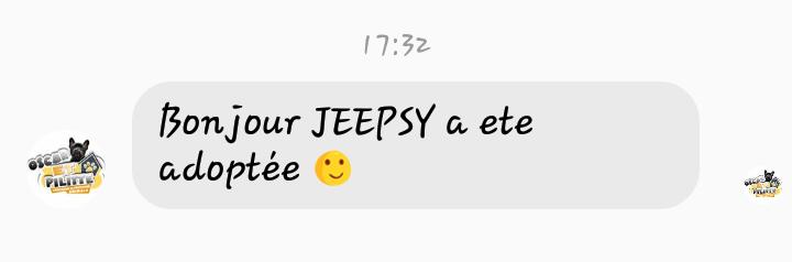 Jeepsy beauceronne née en 2014 Screen33