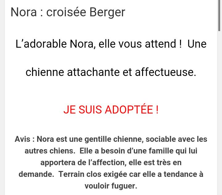 NORA jolie croisée beauceronne née en 2013 (Estimation) Screen57