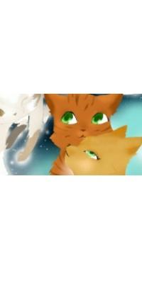 Atelier de redimensions d'avatar Img_2012