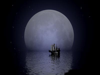 Au clair de Lune 65288610