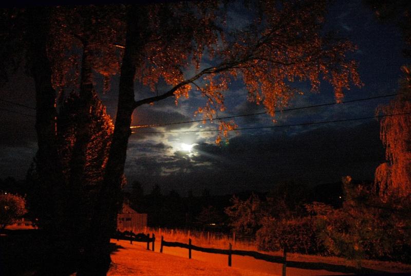 Au clair de Lune - Page 2 Clair-10