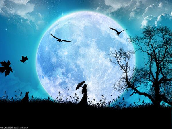 Au clair de Lune Like-t10