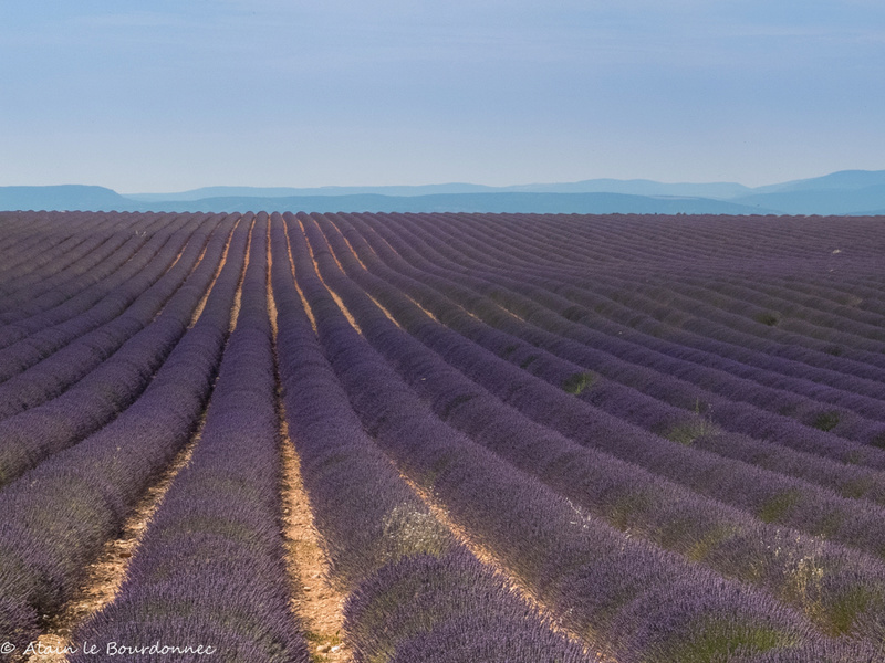Provence 11072011