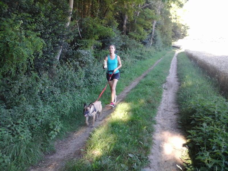 Photos de vous et vos chiens en pleine activité (course, vtt,ring, ..) 20160710