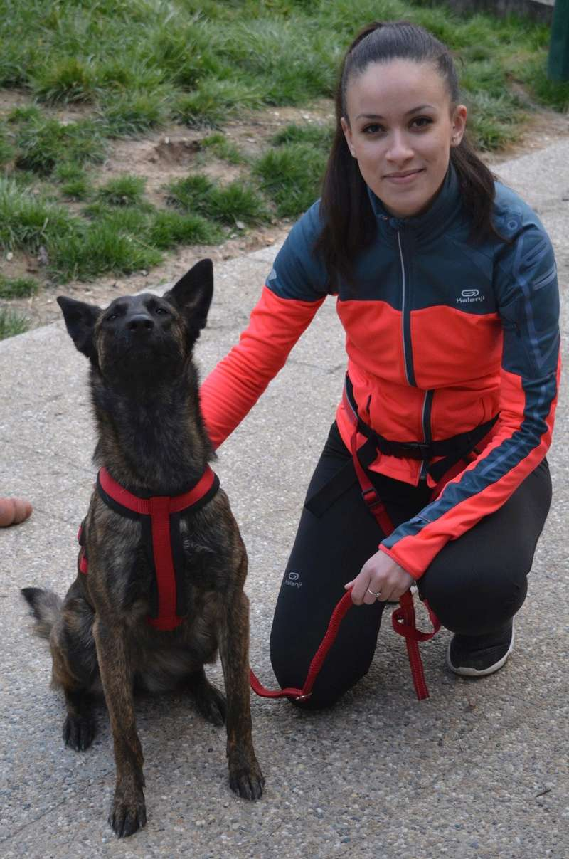 Photos de vous et vos chiens en pleine activité (course, vtt,ring, ..) Dsc_1015