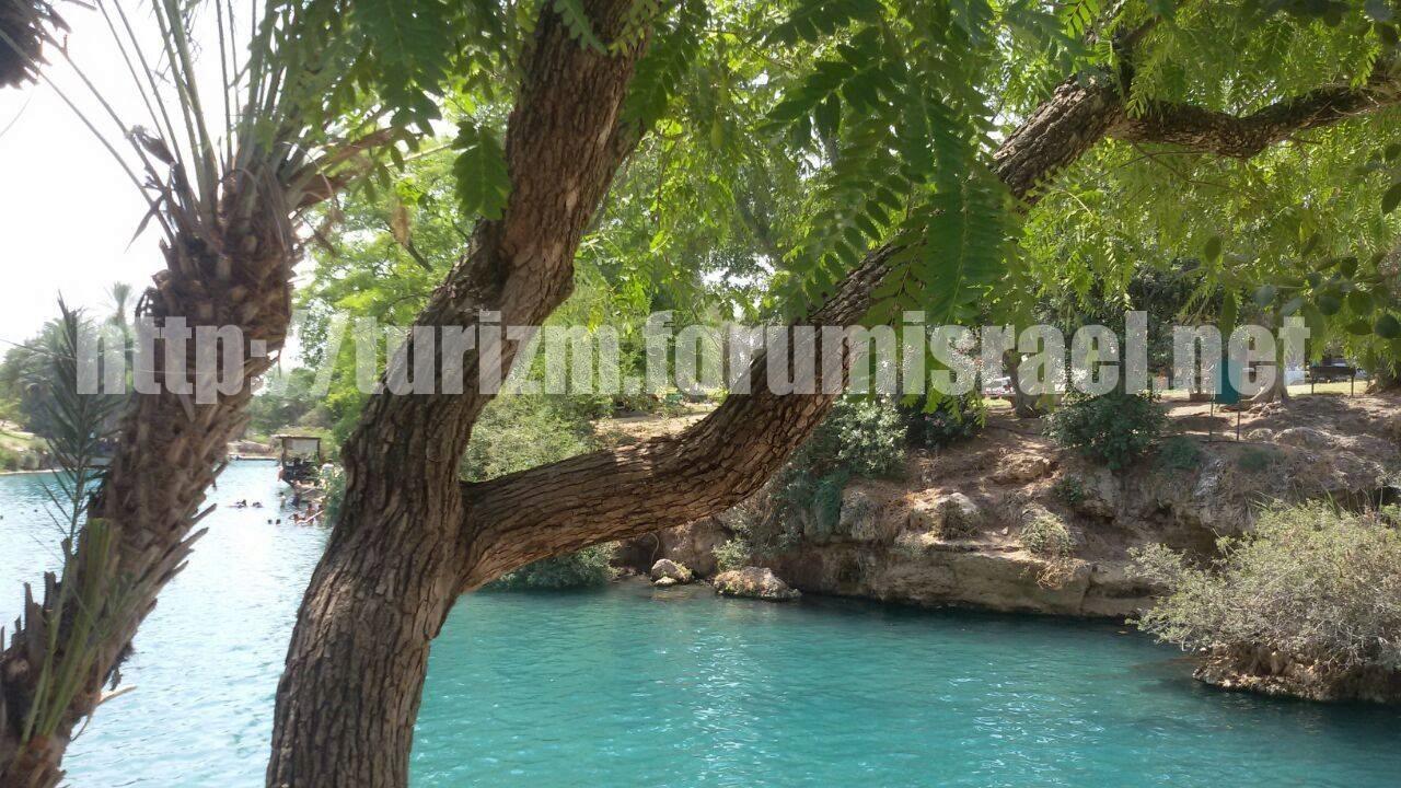 Сахне, (Ган а-Шлоша) природные бассейны и водопады. Sahne_12