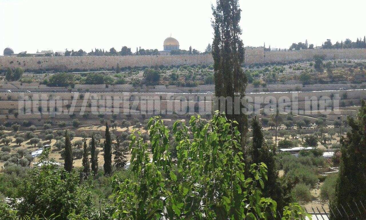 Прогулка по Иерусалиму. Ueedia14