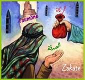 Forumactif.com : talibates L_aumy10