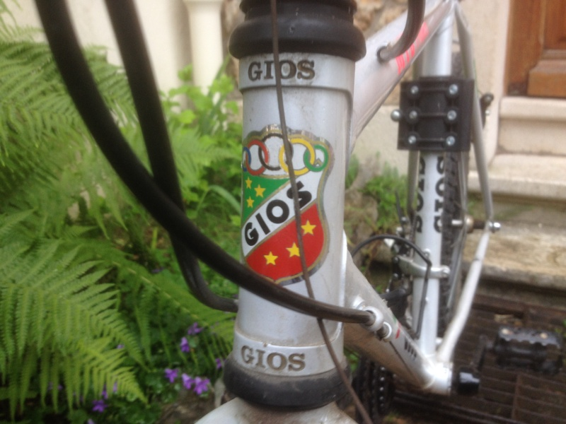 Gios MTB project Img_1212