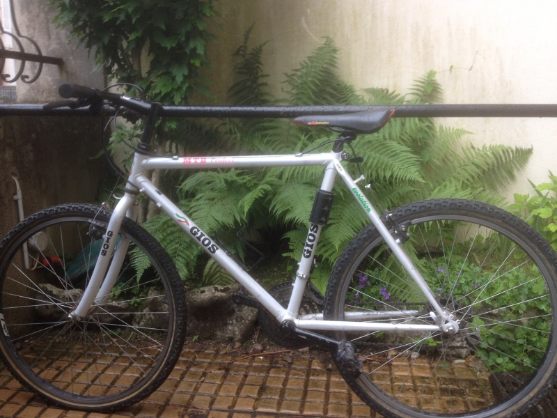 Gios MTB project Img_1215