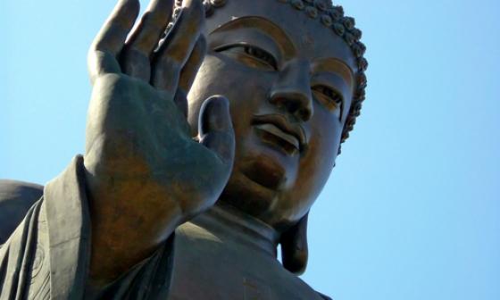 взгляд - Буддийский взгляд на болезнь и целительство X1300210