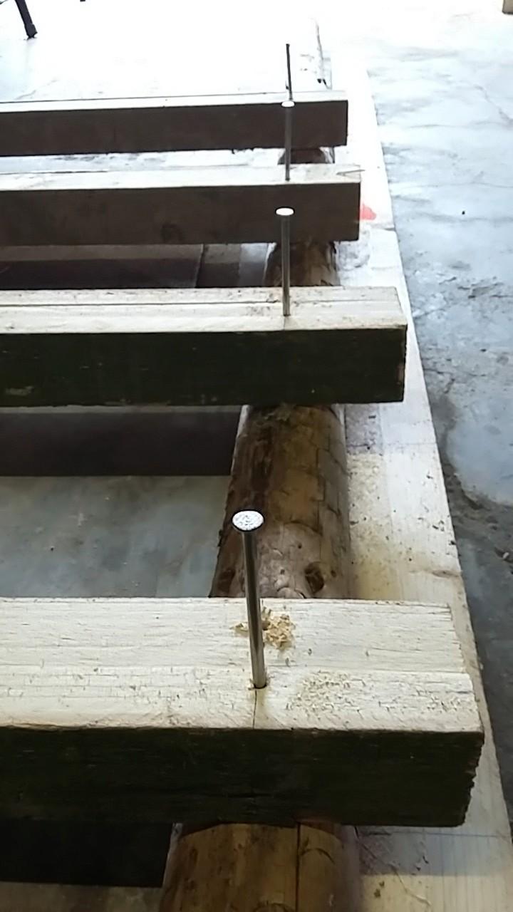 Construction mirador de battue étape par étape via PLC !  710