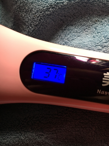 Beautiful Star - Elektrische LCD Haarglätter Bürste Temper10