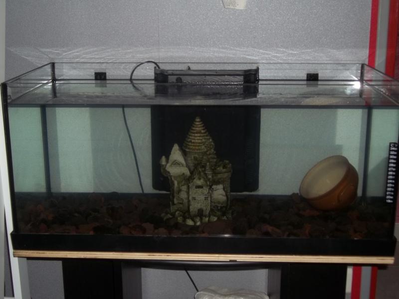 [résolu]aquarium 45 litres - Page 2 100_3711