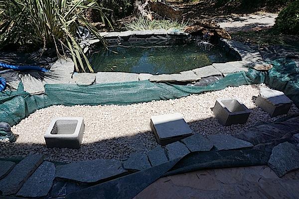 Bassin extérieur avec voiles de chine - Page 4 Dsc00113