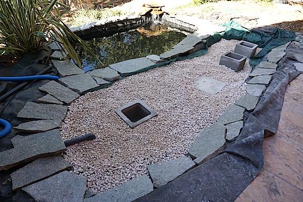 Bassin extérieur avec voiles de chine - Page 4 Dsc00115