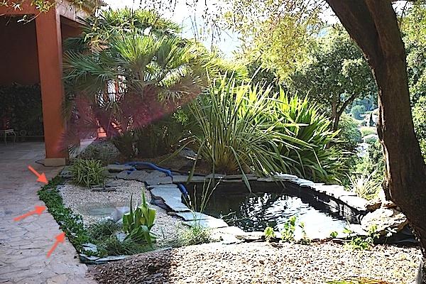Bassin extérieur avec voiles de chine - Page 4 Dsc08216