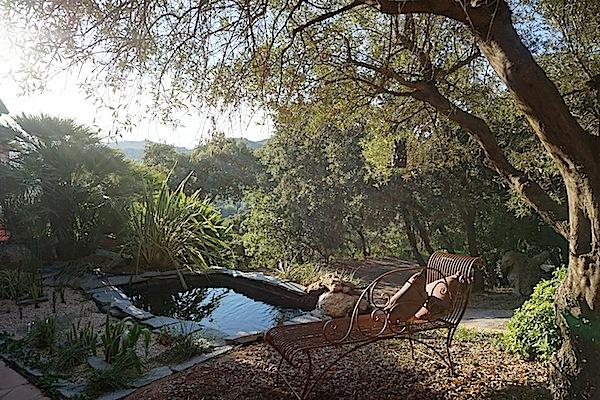 Bassin extérieur avec lagunage et voiles de chine (1) Dsc08527