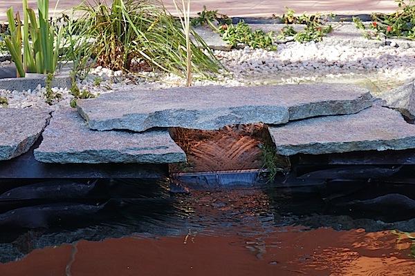 Bassin extérieur avec voiles de chine - Page 5 Dsc08531