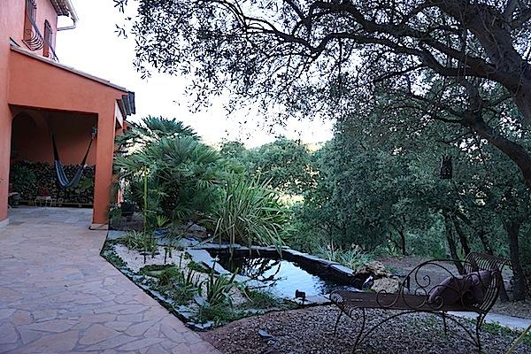 Bassin extérieur avec voiles de chine - Page 5 Dsc09010