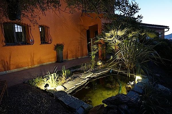 Bassin extérieur avec voiles de chine - Page 5 Dsc09210