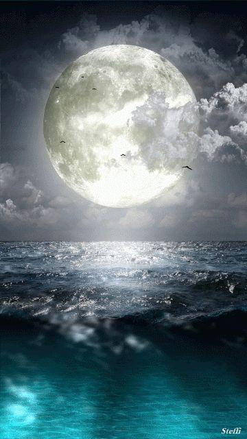 Au clair de Lune - Page 2 B1e28b10