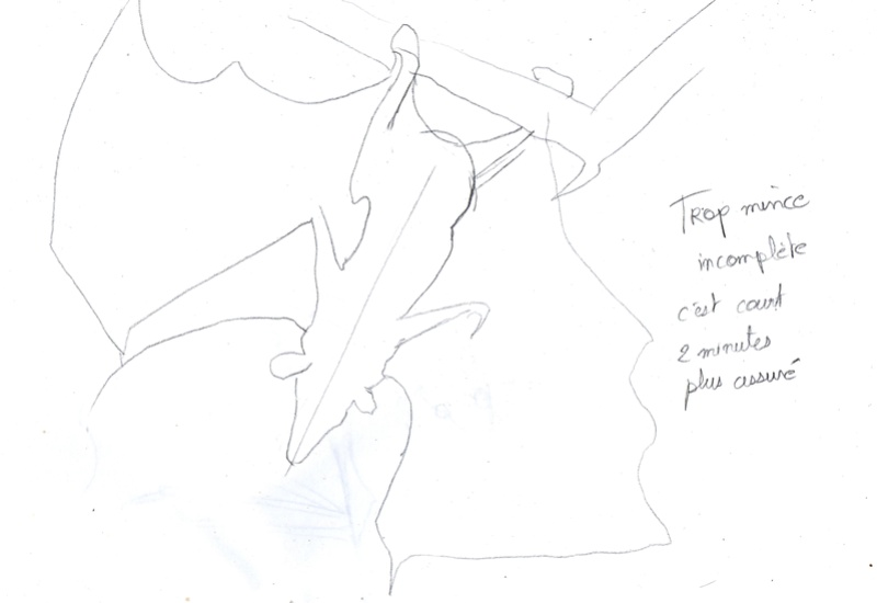 Les croquis de Sambre - Page 2 Chauve12
