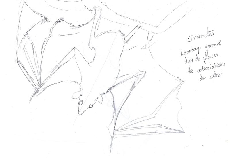 Les croquis de Sambre - Page 2 Chauve13