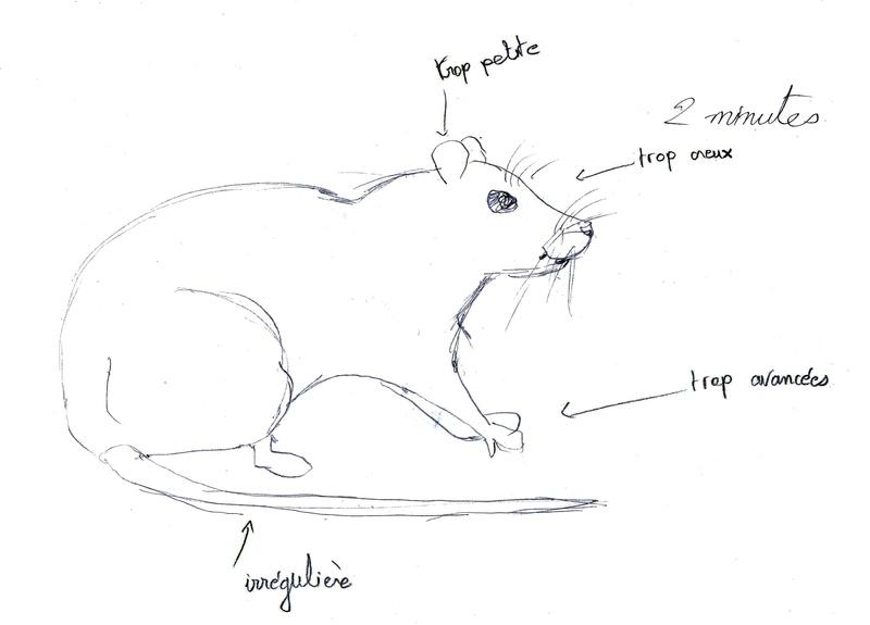 Les croquis de Sambre Rat2mi10