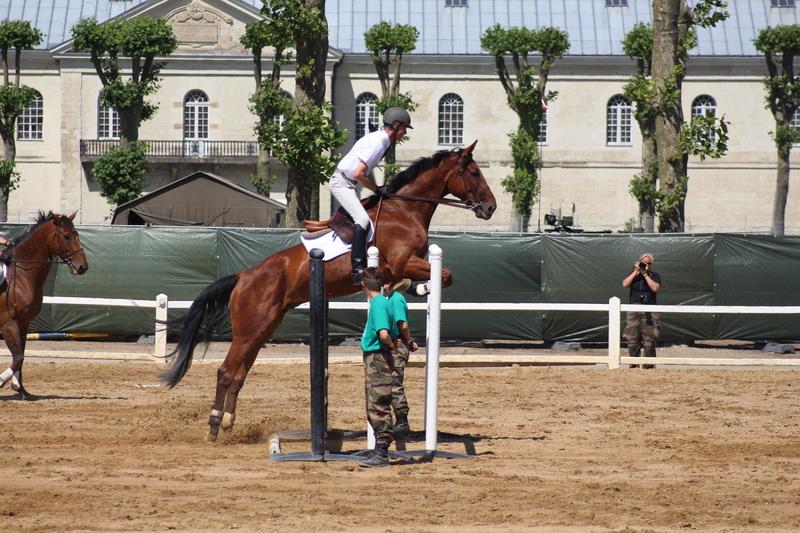 Saumur 2016  Img_4510