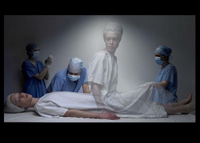 Des scientifiques allemands prouvent qu'il y a une vie après la mort Sans_550