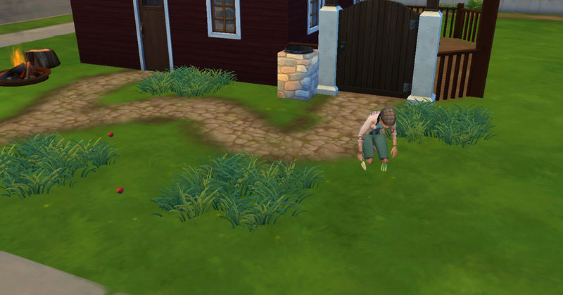 [Abandon] Challenge Jardin-Ecolo-Sims : Les Laterre ! 09-07-26