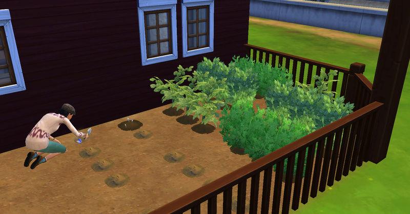 [Abandon] Challenge Jardin-Ecolo-Sims : Les Laterre ! 14-08-14