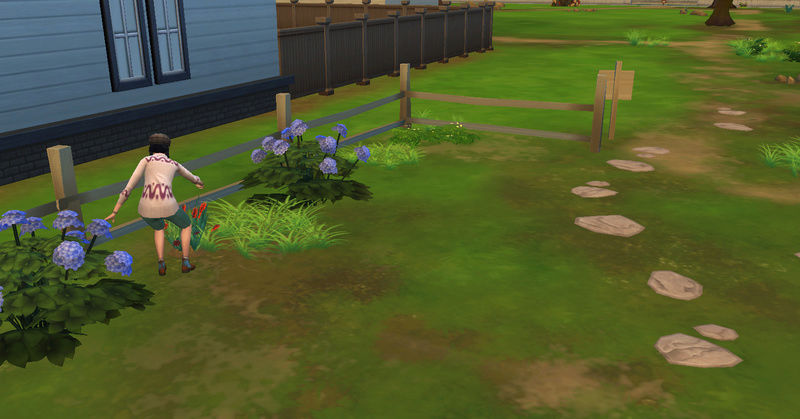[Challenge Jardin-Ecolo-Sims] Les Laterre ! 14-08-15