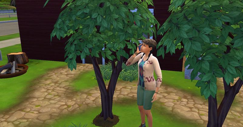[Abandon] Challenge Jardin-Ecolo-Sims : Les Laterre ! 23-07-24