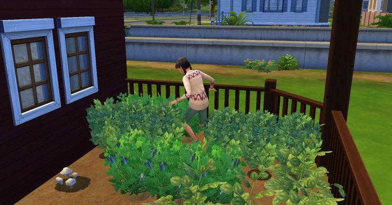 [Abandon] Challenge Jardin-Ecolo-Sims : Les Laterre ! 23-07-25