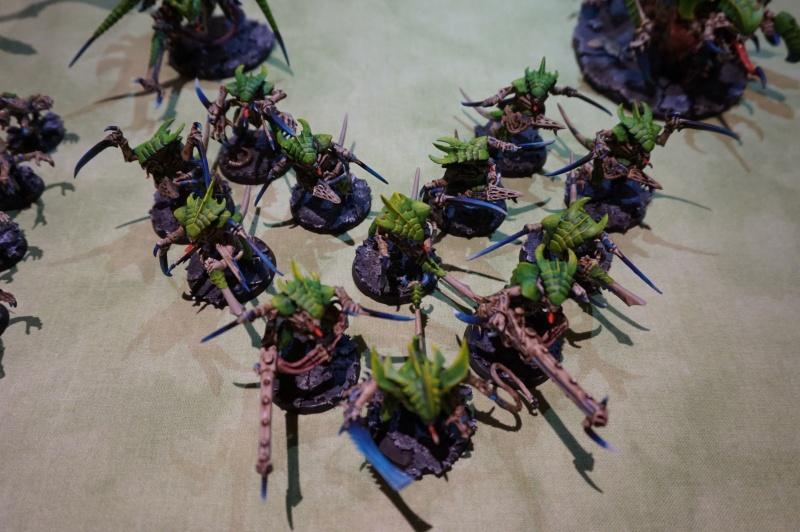 Flotte ruche Rakshasa - Page 5 Dsc00915