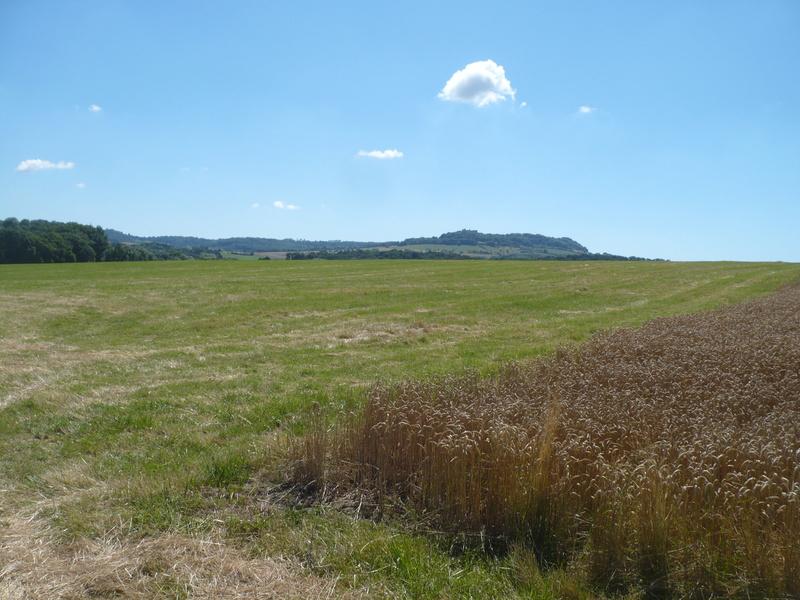 A la recherche d'un terrain de vol avec piste Terrai10