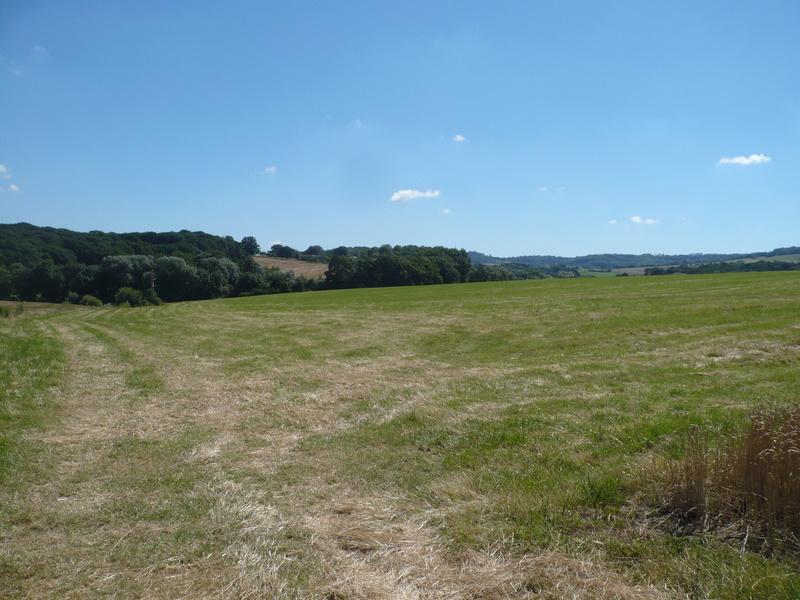 A la recherche d'un terrain de vol avec piste Terrai11